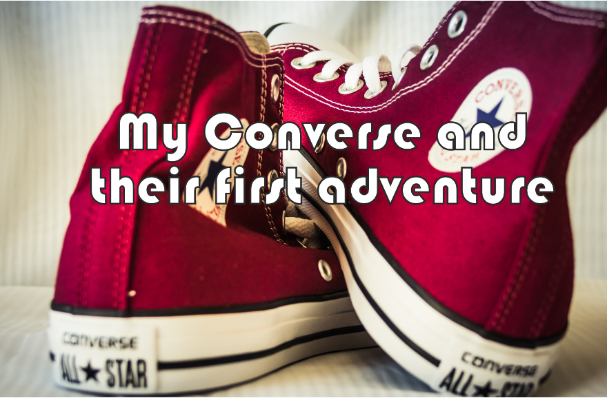Converse Consumer Feedback Survey